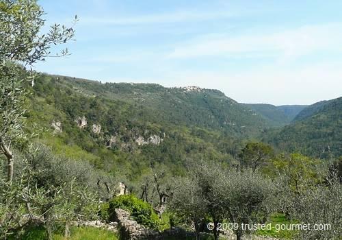 The village of Saint Cézaire sur Siagne