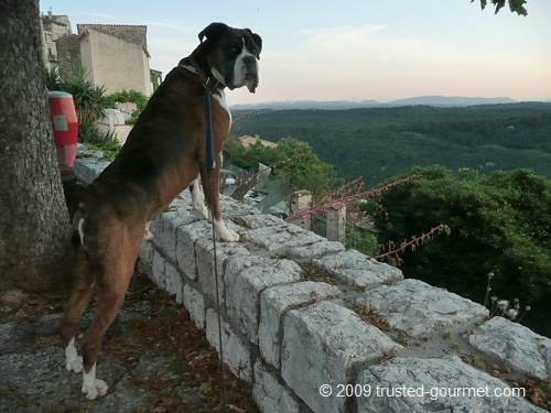 Henri watching the landscape from the village